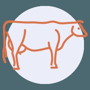 beef preparation skills
