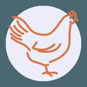chicken preparation skills