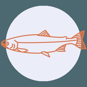 fish preparation skills