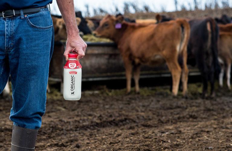 Albert Straus Milk Bottle